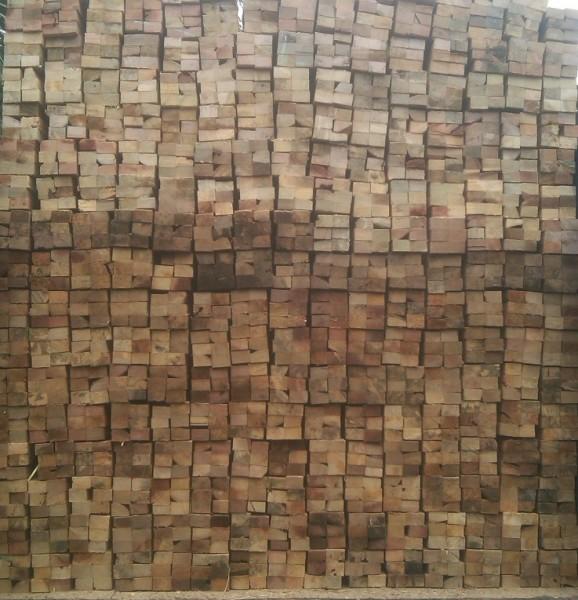 Harga Kayu Borneo, Jual Kayu Borneo, Spesifikasi Kayu Borneo