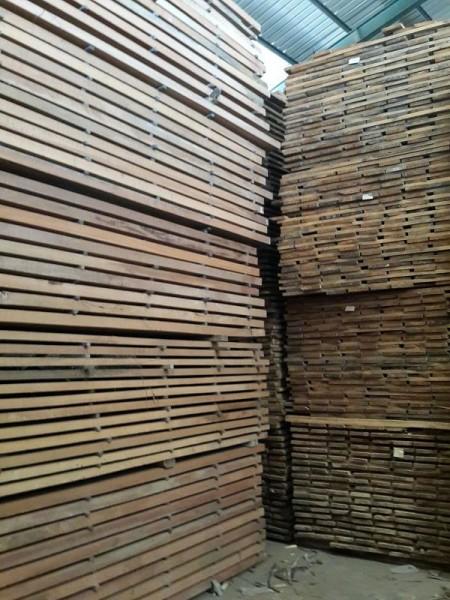 harga kayu kamper