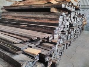 kayu123