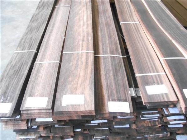 amara1-600x450