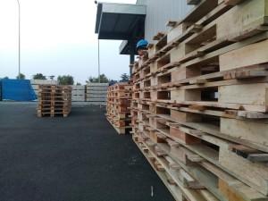 pallet kayu123-1