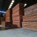 kayu kruing