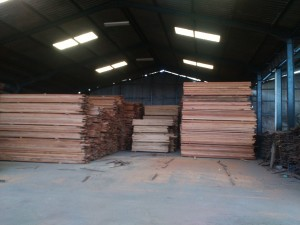 jual kayu nyatoh oven